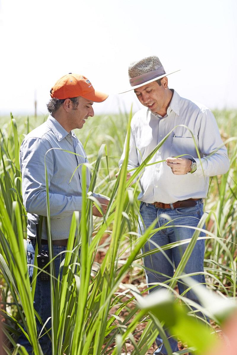 Bayer SA/Brazil: Company Profile - Bloomberg
